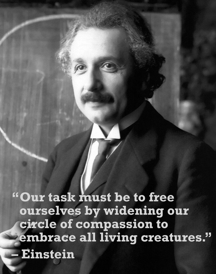 Einstein was an animal lover! If he knows what's up, shouldn't everyone? Get more inspirational animal rights quotes here: http://www.peta2.com/blog/famous-animal-rights-quotes/