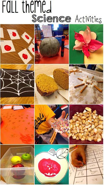 Fall themed Science activities that students LOVE!