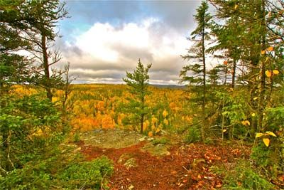 We have many packages offered here at Gunflint Lodge! Come view our fall packages to see what you could do at your next vacation, ie Gourmet Retreat, Elopement Package, Family Canoeing Package, Couples Spa Retreat, etc. Ones for each season. See Getaway suggestions in comments.
