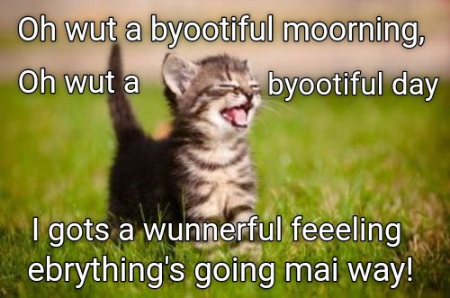It's such a beautiful day, I feel like singing! http://cheezburger.com/9036132608/cat-morning-meme