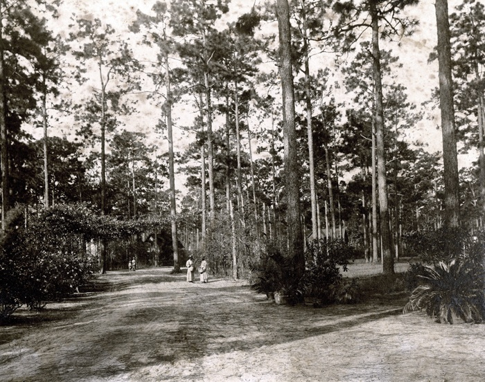 17 Best Images About History In Summerville On Pinterest