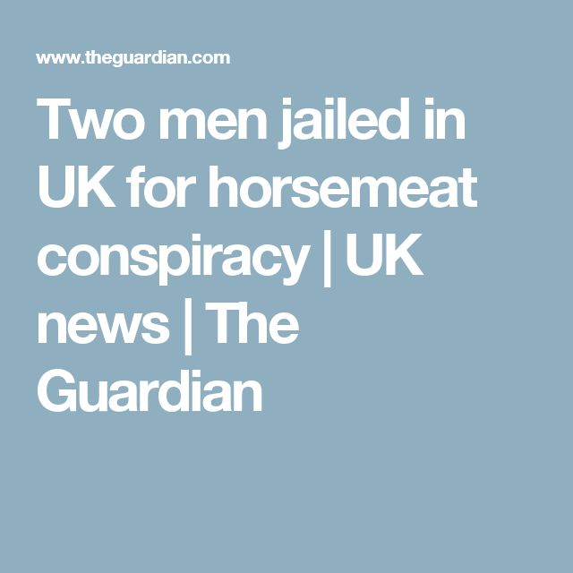 Two men jailed in UK for horsemeat conspiracy   UK news   The Guardian