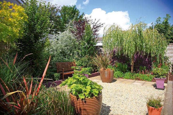 'Low Maintenance' Garden Guide | Homebuilding & Renovating