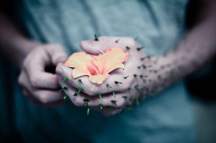 Canonization-of-Love