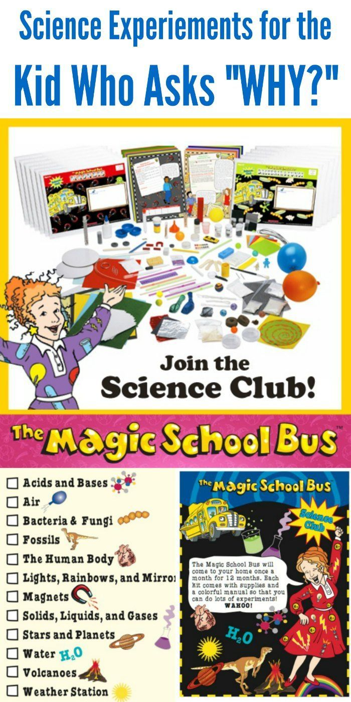 International Montessori Academy - Home