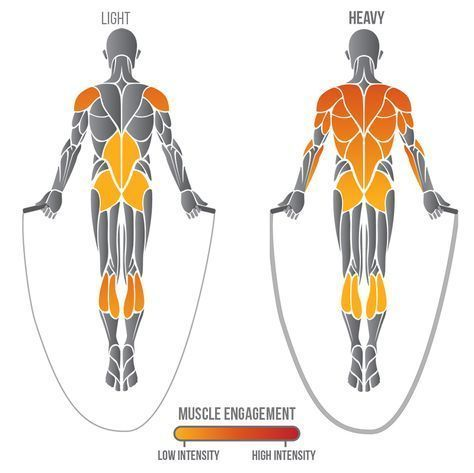 Jump Rope Muscle Engagement