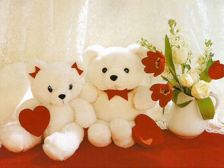 cute white teddys