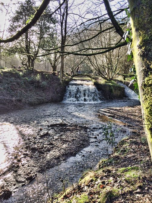 I was out walking today with the family and we went to Sunnyhurst Woods in Darwen. I took a few photos to share with you.