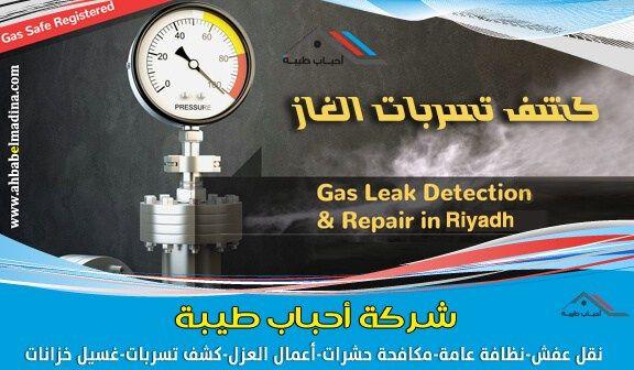 شركة كشف تسربات الغاز المركزي بالرياض مع الضمان Detection Repair Leaks