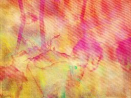 abstract photography 003