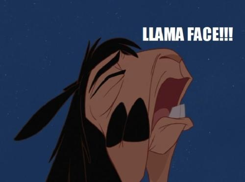 "Llama face! - The Emperor's New Groove - my favorite ""new"" Disney movie!!"