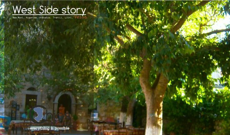 We will do a short stop to enjoy a greek coffe under the shade of an old pane tree in the middle of the Vessa vilage main square