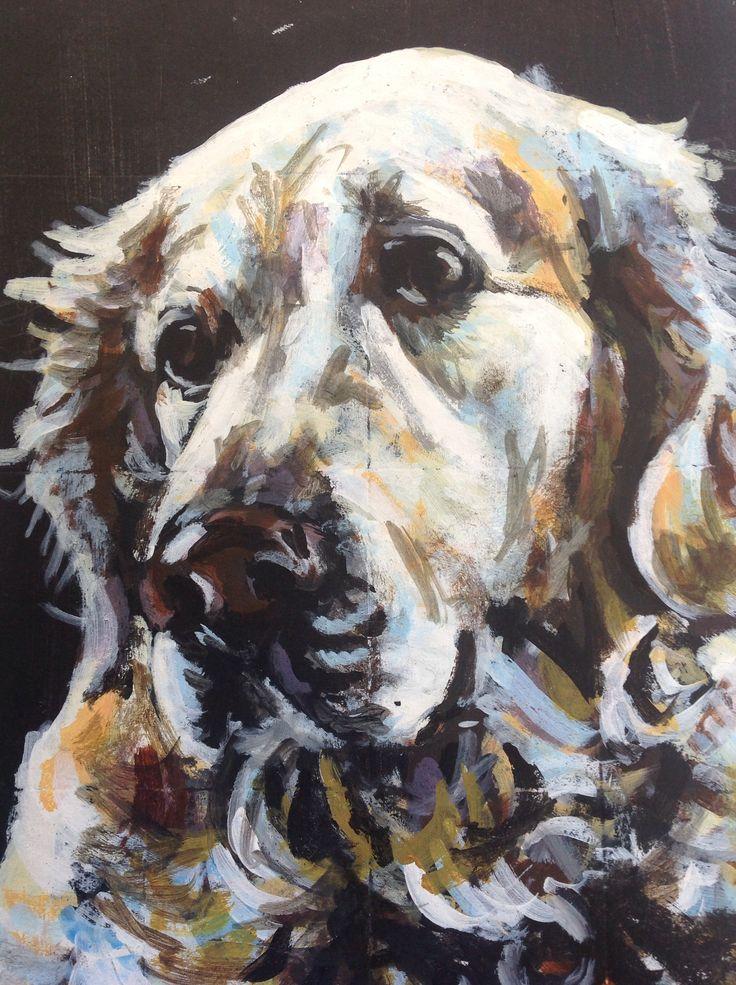 Dog - jack Beasley