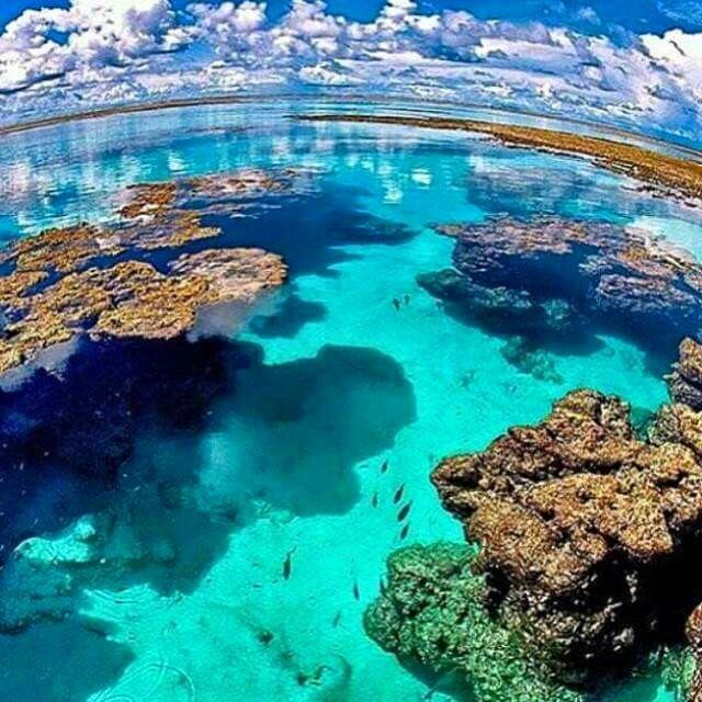 Isto não é o Caribe, é nordeste é Brasil - praia do patacho litoral norte de Alagoas - sem grandes badalações, ainda.