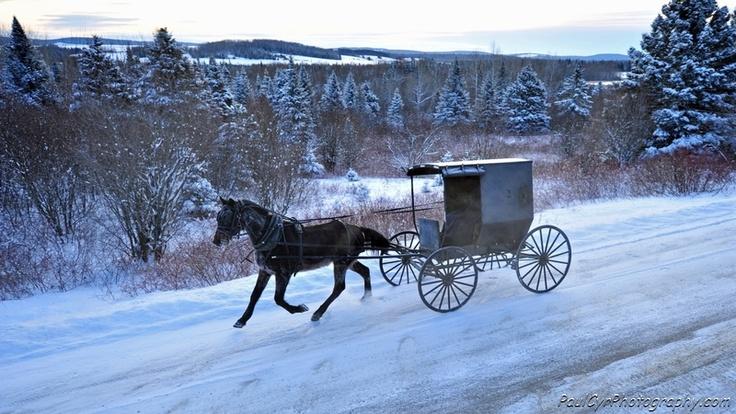 Amish of Aroostook County