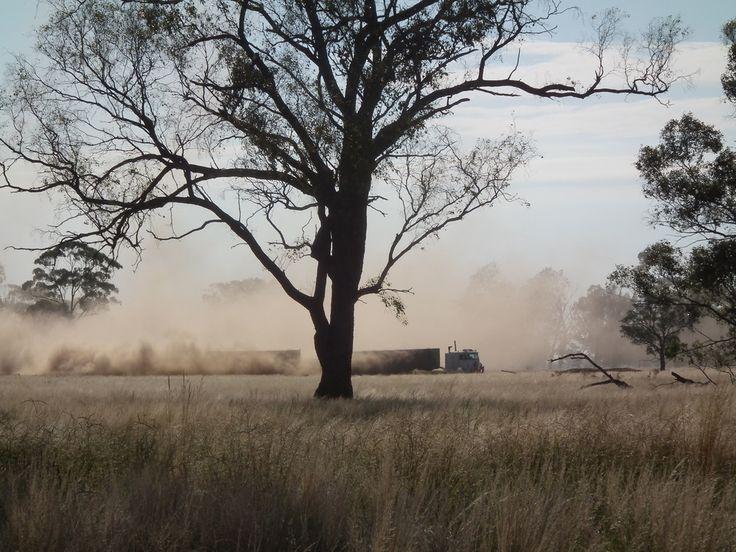 https://flic.kr/p/98BxZt   road train   hauling wheat & stirring dust