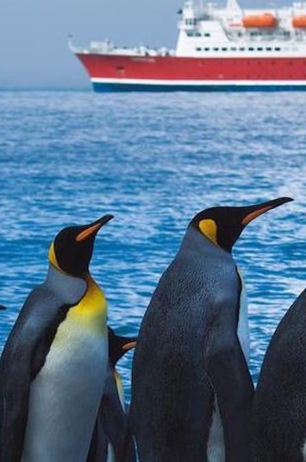 Antarctica Cruise with experts | G Adventures