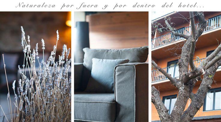 Naturaleza por fuera y por dentro de @MontanyaHotel @theguestgirl #MontanyaExperience #BCNmoltmes #montseny #nature