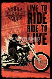 Harley Davidson (Live To Ride)