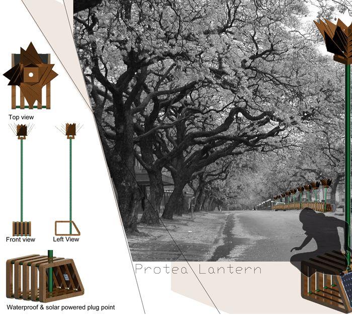 Protea Lantern by Zuki Ndodana