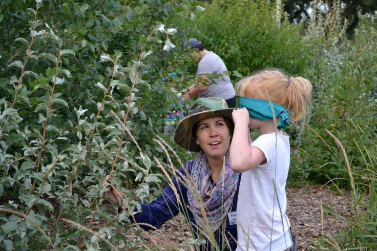 FREE Family Nature Nights in Edmonton All Summer #yeg