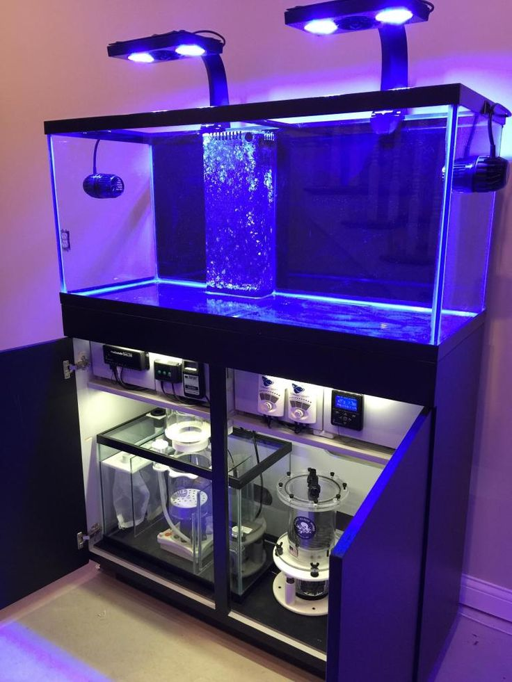 Best 25 Aquarium Sump Ideas On Pinterest Sump Reef