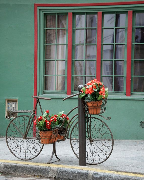 Paris Photography Bike With Flowers Green
