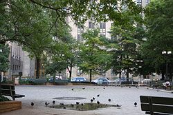 13 September 2008, Collect Pond Park. A sad, derelict park inhabited by homeless and numerous pigeons.New York City Chinatown > Historical Photos > Canal Street and the Five Points