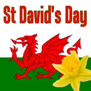 March 1st is my Mom's birthday and it is St David's Day