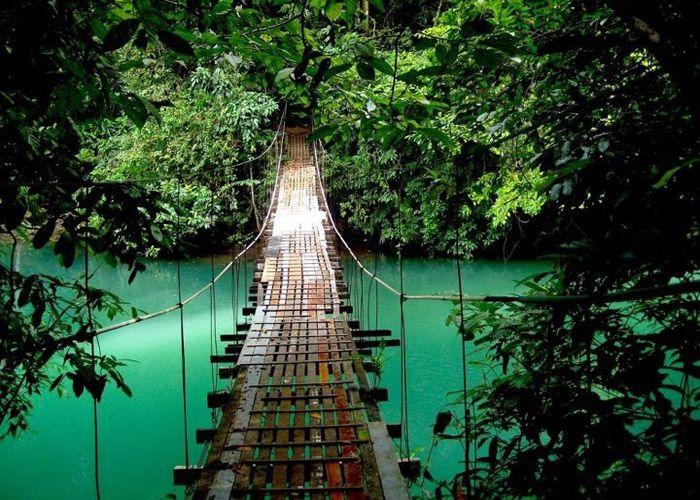 Naturaleza pura e destino ecológico #costarica