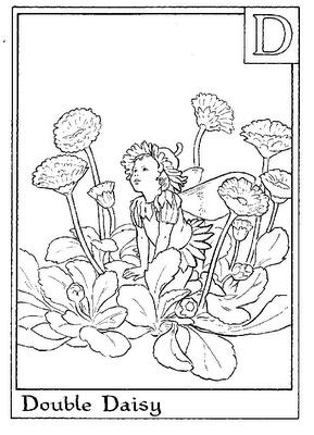 59 best FLOWER FAIRY ALPHABET images on Pinterest Fairy coloring