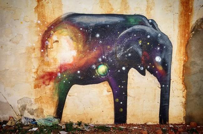 Afrika'daki Duvarları Fil Resimleriyle Süsleyen Sokak Sanatçısı ile Tanışın: 'Falko Fantastic' Sanatlı Bi Blog 32