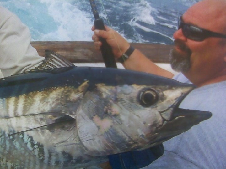 159 best images about tuna fish on pinterest for Blue fin fish
