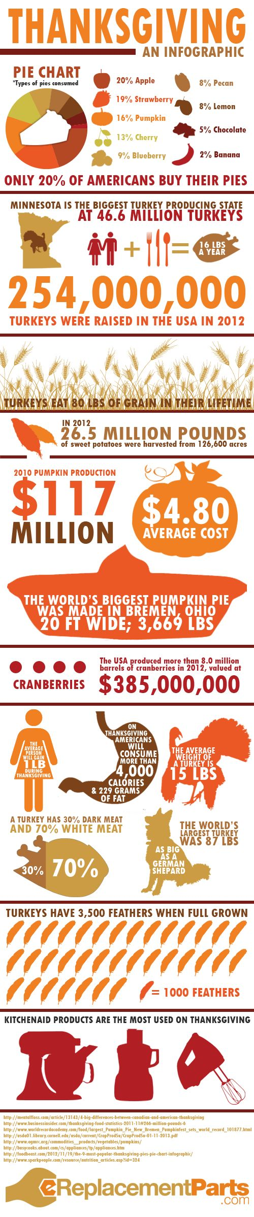 Thanksgiving: An Infographic |