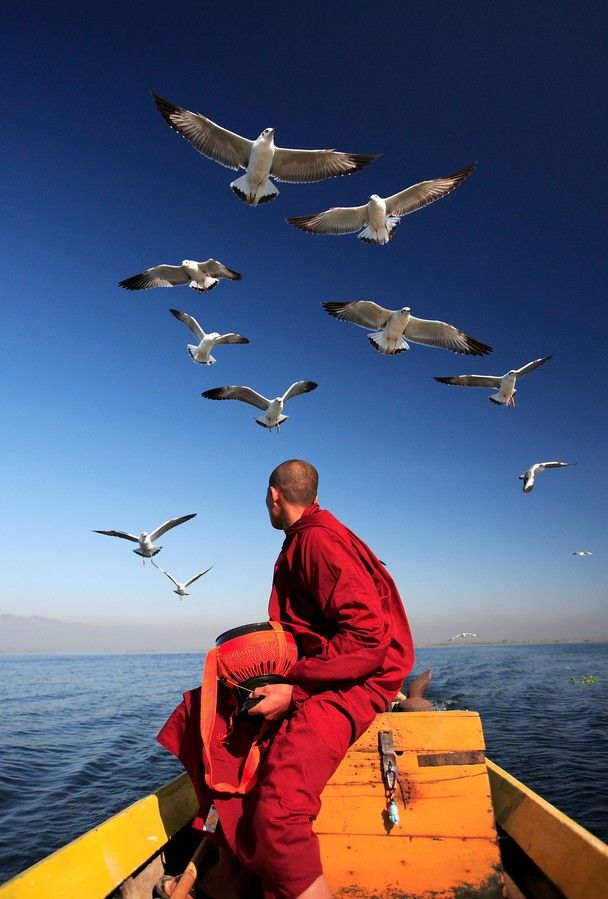 A monk and seagulls on Inle Lake, Burma (Myanmar).  Photo by: SauKhiang Chau (Bukit Mertajam, Penang, Malaysia); Inle Lake, Shan State, Myanmar