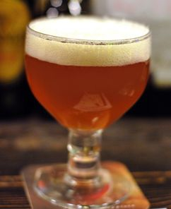 "This recipe is adapted from Amahl Turczyn's article ""Clone Beers: Chimay Red"" in the May/June 2000 issue of Zymurgy magazine.For more information on the history and methods of Trappist brewing, check out Brew Like A Monk by Stan Heironymous."