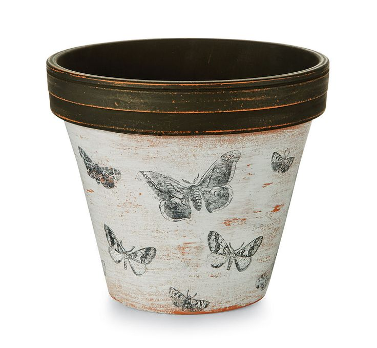 Decorate yourhome with this clay pot covered in a beautiful stamped butterfly pattern.   Project Instructions:   Step 1 Using a dry paintbrush, lightly b…