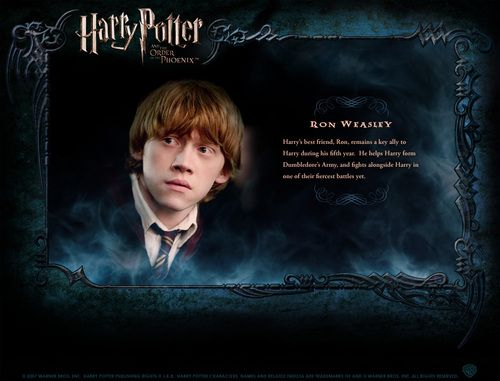 690 best images about Harry Potter on Pinterest