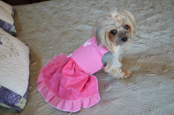 Pink pink dog Dress  PRICE REDUCED by FurBabiesCloset on Etsy