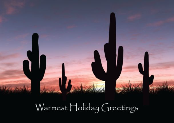 33 best the texas series greeting cards images on pinterest preview image for product titled texas cactus m4hsunfo