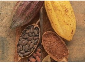 Cacao a guilt free treat - body+soul
