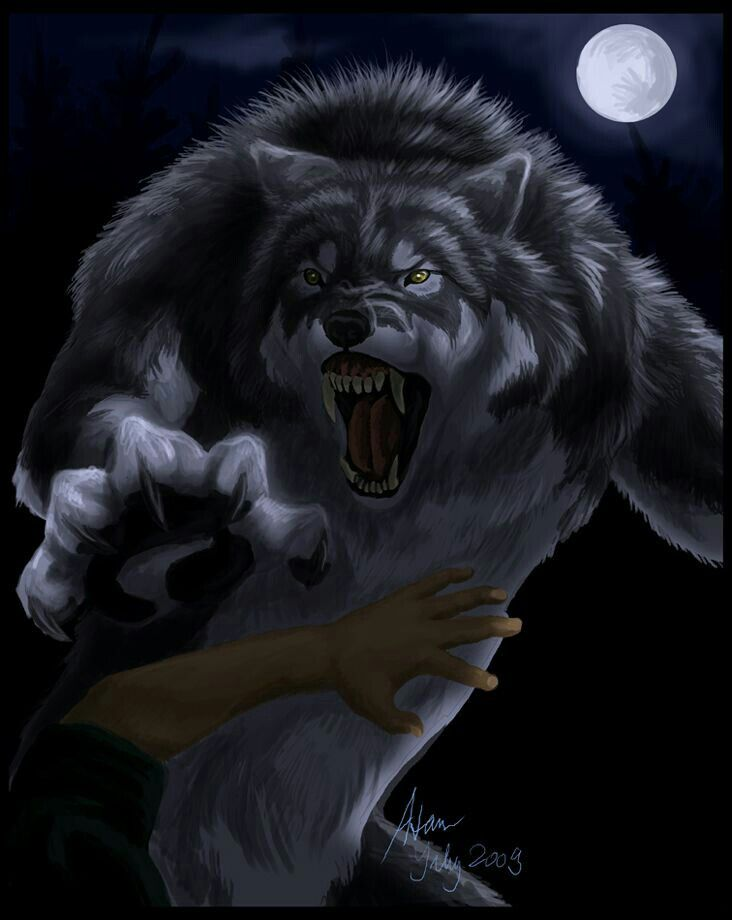 Nice werewolf - photo#34