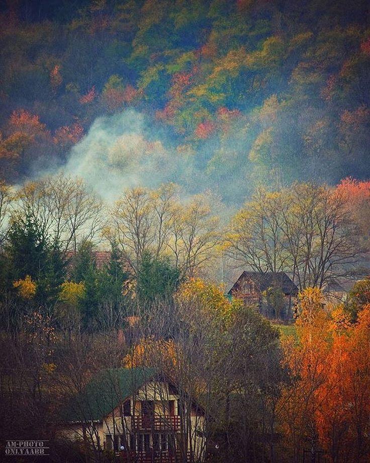 'November View'  by Attila Ábrahám  @onlyaabb . . . . #autumn #november #coloursofautumn #smoke #forrest #woods #colours #trees #igautumn #szekelyfold #seklerland #transilvania #erdély #nature #travel #romaniapitoreasca #besenyő #pădureni #maksa #moacsa #ősz #toamna #szeklerland #transylvania #trees #destinationcovasna #instagood #bbctravel