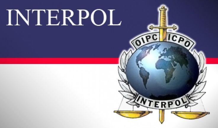 Allarme Interpol: jihadisti su navi da crociera