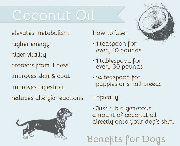 Must read! Coconut oil for dog! 2 weeks ago I read a book. The book reveals the secret of this magic healing product.  For a limited time only, the book, was $39, is just $10 now, with 60 days money back guarantee! http://slimcelebrity.com/coconutsecret  Read more #coconutoil success stories here: http://slimcelebrity.com/slim-downs/coconut-oil-for-weight-loss-success-stories/