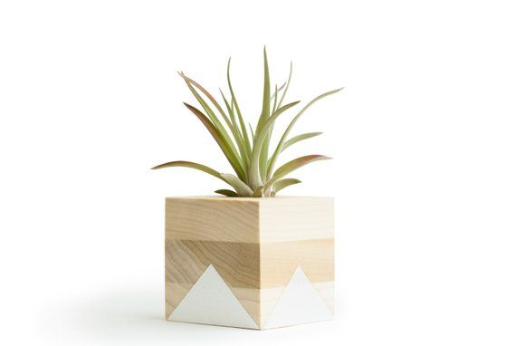 White Geometric Air Plant Holder, Gifts for Her, Gifts for Mom, Shelf Plant Display, Small Indoor Pl