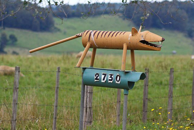 Tasmanian Tiger - Australia best mail-box ever