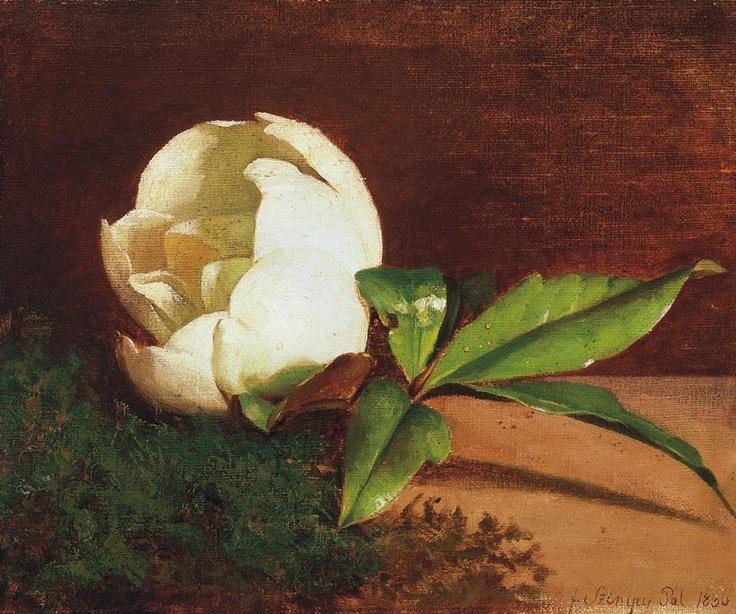 Pál Szinyei Merse ~ White Magnolia