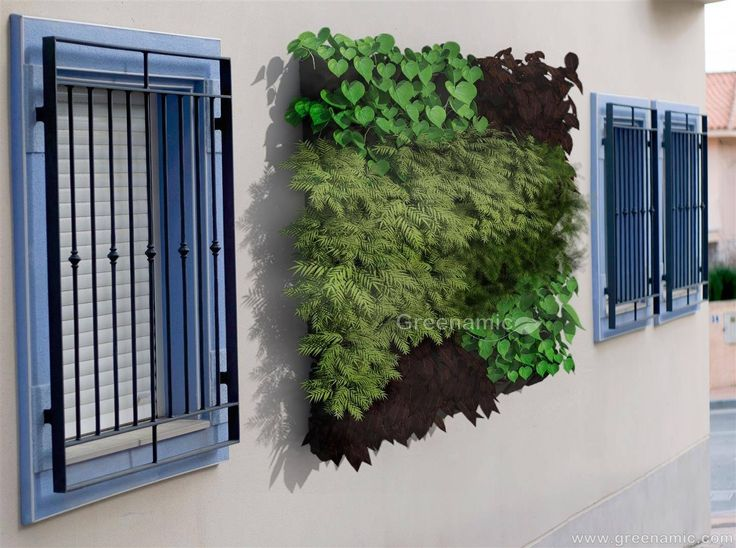 - wall mounted - removable plant pot individually - space saving    Additional Information: www.greenamic.com