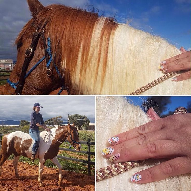 I don't normally ride bareback and certainly not without a helmet but Dave convinced me to get on 😁 Gryph was a good boy of course. Love that I #canhaveprettynailsandhorses and #dirtyhandsprettynails - my #jamberry wraps can stand up to just about anything!!  #junicornjn #flirtyflairjn with #overlapjn and #flirtjn and #zestjn #lacquer and #trushinejn gel. #horses #pinto